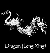 Kung Fu Martial Arts - Dragon